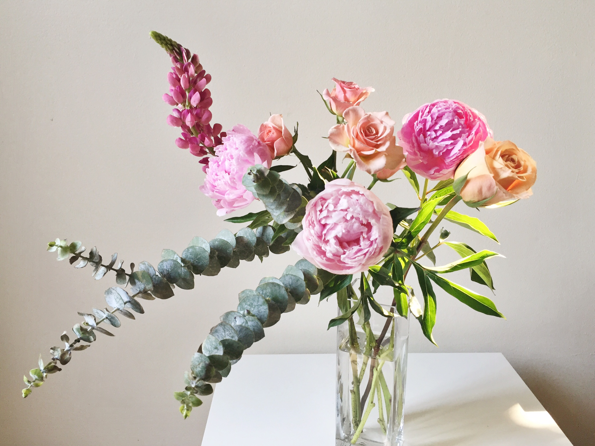 Gorgeous blooms from Toronto Flower Market